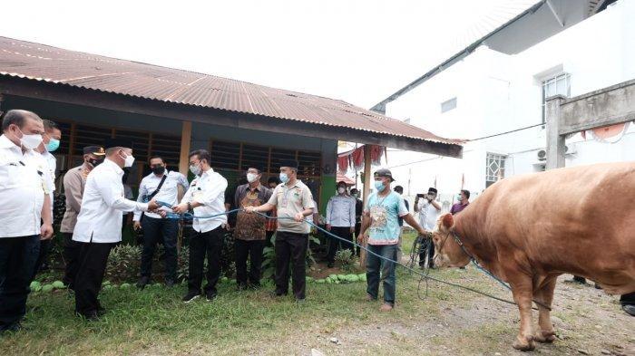 Mentan SYL Serahkan Sapi Kurban ke Pengurus Masjid Agung Syekh Yusuf Gowa