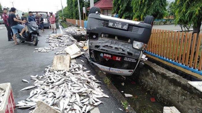 Mobil Pick Up Terbalik di Pammanu Luwu, Ikan Bandeng Berhamburan di Jalan