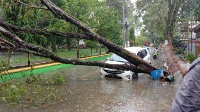 Masamba Luwu Utara Dilanda Angin Kencang, Kantor DLH dan Mobil Tertimpa Pohon Tumbang
