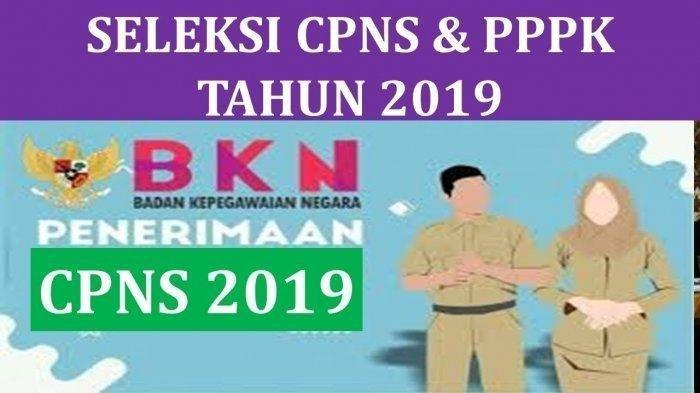 Pendaftaran CPNS 2019 di sscn.bkn.go.id setelah Penerimaan PPPK (P3K), Berikut Penjelasan Resmi BKN
