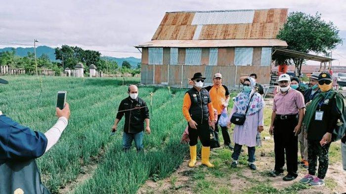 Bupati Enrekang Ingin Petani Terapkan Konsep Pertanian Modern