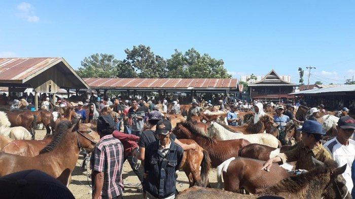 Pandemi Covid-19 , Penjualan Kuda di Jeneponto Menurun