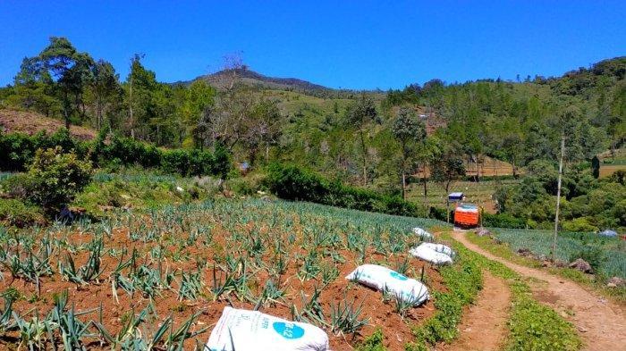 Camat Tinggimoncong Gowa Mengaku Sudah Edukasi Warga Soal Fungsi Hutan