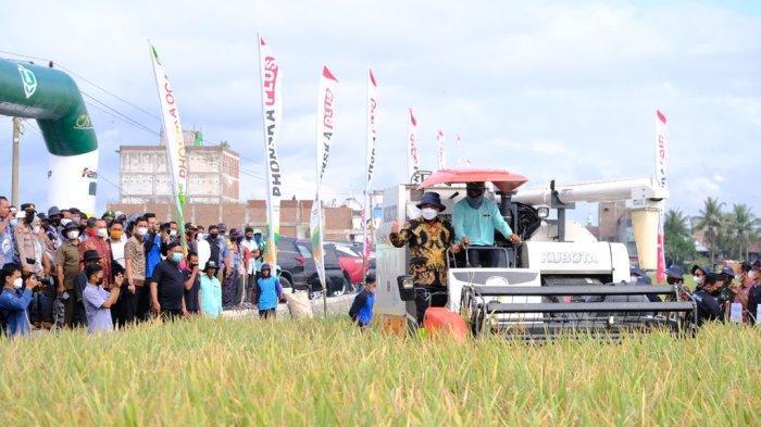 Panen Padi di Sidrap, Andi Sudirman: Gudang Penuh di Bulog dan Penggilingan