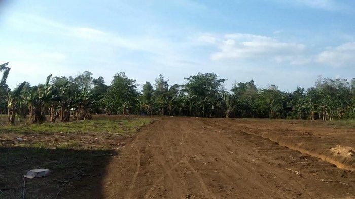 Lokasi Pemakaman Covid-19 di Paccellekang Gowa Sudah Diratakan
