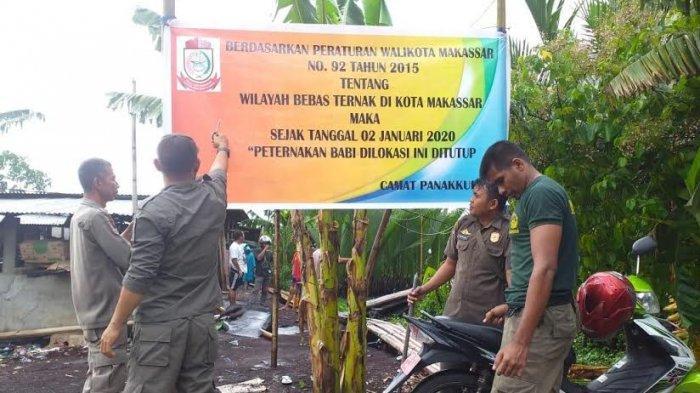 Satpol PP Panakkukang Ikut Bantu Relokasi Ternak Babi di Panaikang