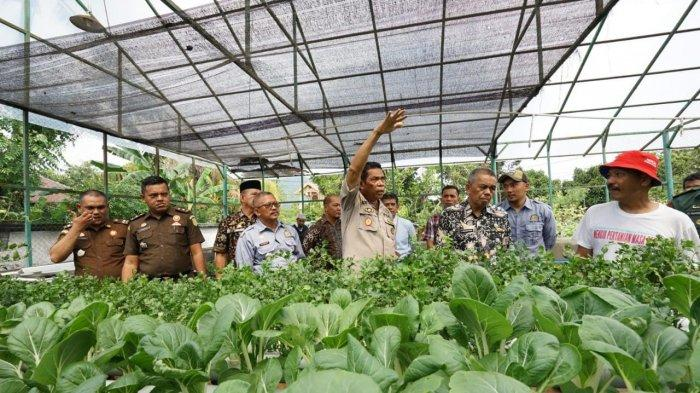 Dinas Pertanian Palopo Pameran Pasar Organik dan Pencanangan 1 Juta Cabai