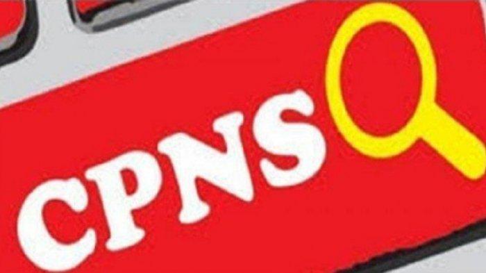 pendaftaran-cpns-2019-di-sscasnbkngoid-bisa-diakses-pada-pukul-1111-buku-petunjuk-resmi-bkn.jpg