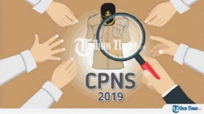 Link Pendaftaran CPNS 2019 sscasn.bkn.go.id - sscn.bkn.go.id hingga Cek Rincian Gaji Bakal Diterima