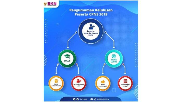 Cek Pengumuman Hasil Seleksi CPNS 2019 di Web Kemenkum HAM, Kemenag, Pemberkasan di sscn.bkn.go.id