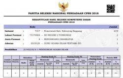 CPNS 2018 - Kebutuhan Guru Mendesak, Dinas Pendidikan Sidrap Berharap pada PP No.49/2018