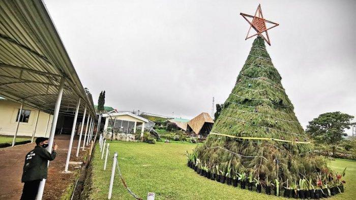 FOTO: Pohon Natal Raksasa Hiasi Malino Highlands