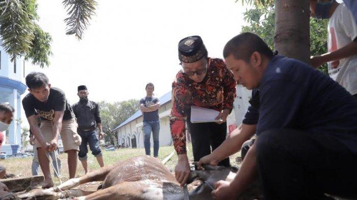 PDAM Makassar Sembelih 20 Hewan Kurban, Dagingnya untuk Dhuafa dan Panti Asuhan