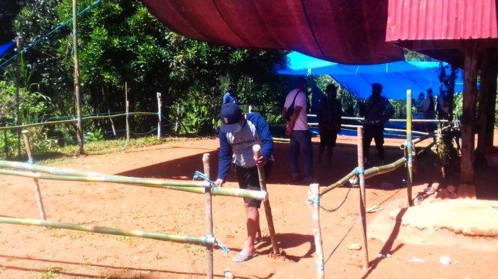 Polisi Bongkar Arena Judi Sabung Ayam di Bungin Tana Toraja