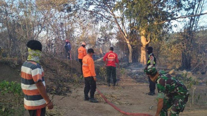 Kebakaran Hutan Merambah ke Gunung Bawakaraeng, 10 Hektare Terbakar