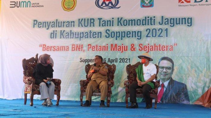 Dimodali BNI, Pemkab Soppeng Siap Dampingi Penanaman Jagung di Lahan 4.020 Hektar