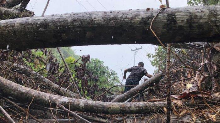 Dusun Kambunong Kabupaten Mamuju Tengah Akhirnya Bisa Nikmati Listrik dari PLN