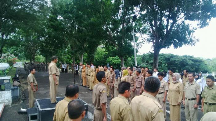 ASN Kelurahan Makassar Terlibat Politik Praktis