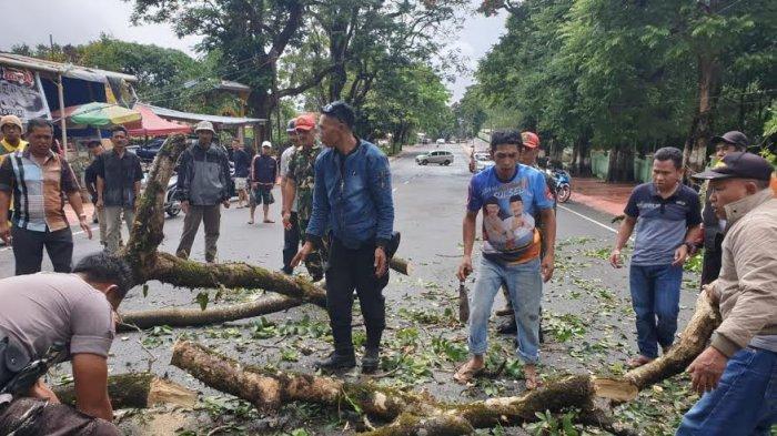 Korban Pohon Tumbang di Malino adalah Pelajar MTS Muhammadiyah