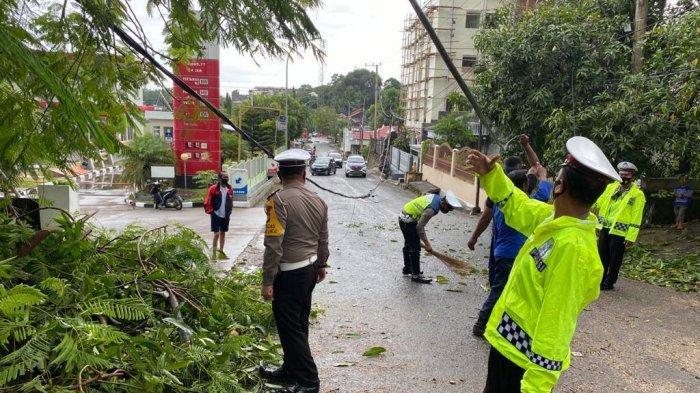 Diguyur Hujan, Pohon Tumbang di Sengkang Wajo Sempat Macetkan Jalan