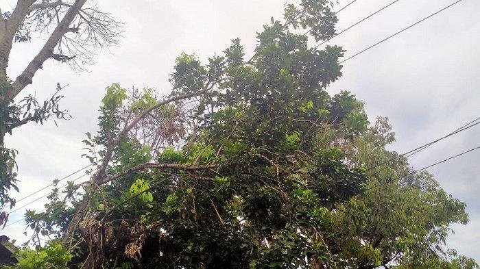 Cuaca Ekstrem Sinjai Sulawesi Selatan Sebabkan Listrik Beberapa Kali Padam, Ini Sebabnya!