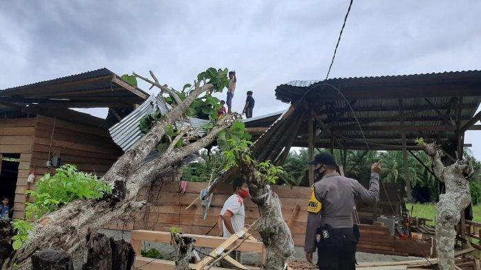 Angin Kencang Landa Pasangkayu, Satu Rumah Warga Tertimpa Pohon