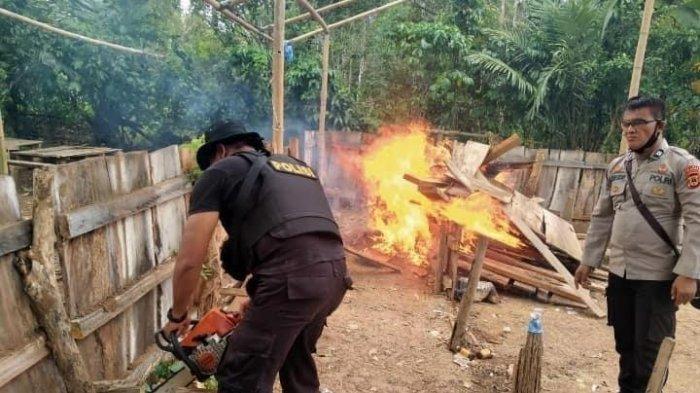 Setelah Rilau Ale, Polisi di Bulukumba Juga Bakar Arena Sabung Ayam di Gantarang