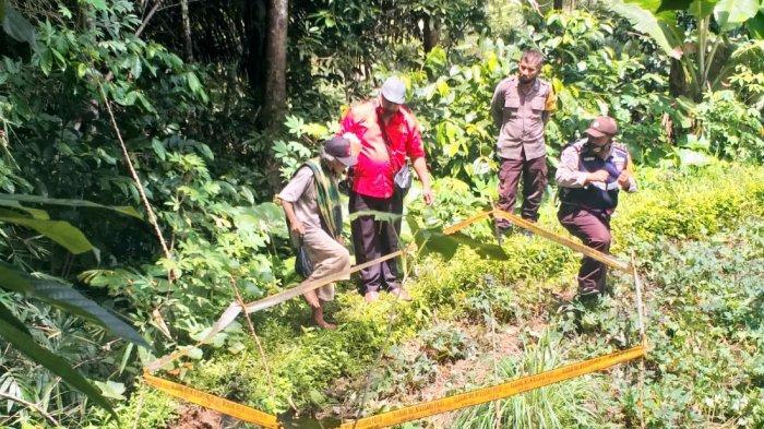 Markus Temukan Marten Tak Bernyawa di Kebun Ubi Kalindungan Toraja Utara