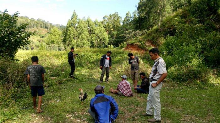 Polisi Ciduk 4 Orang Pelaku Judi Sabung Ayam di Kurra Toraja