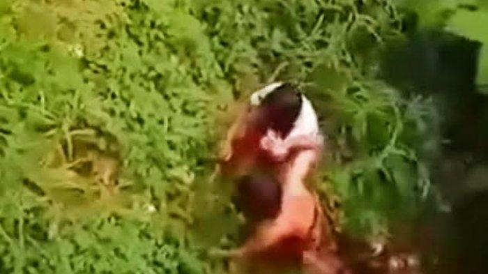 Viral, Warga Toraja Utara Selamatkan Gadis Usai Lompat dari Jembatan