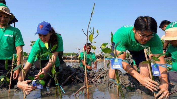Salonpas® Dorong Anak Muda Aktif Melalui Gerakan 'Rekatkan Kehangatan'