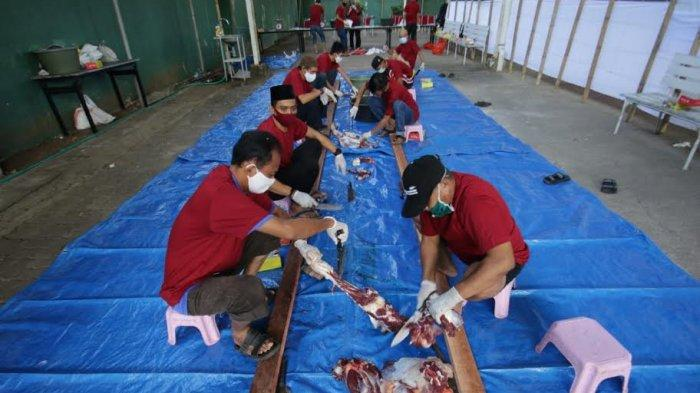 Idul Adha 2020, Pertamina MOR VII Bagikan Hewan Kurban