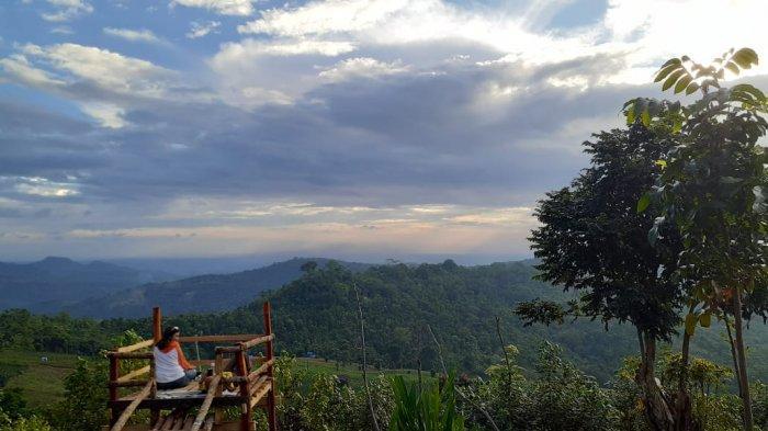 Wisata Virtual Tribuners #5 Sambangi Puncak Tinambung, Sejuknya Sulsel Hingga Nuansa Alam yang Kuat