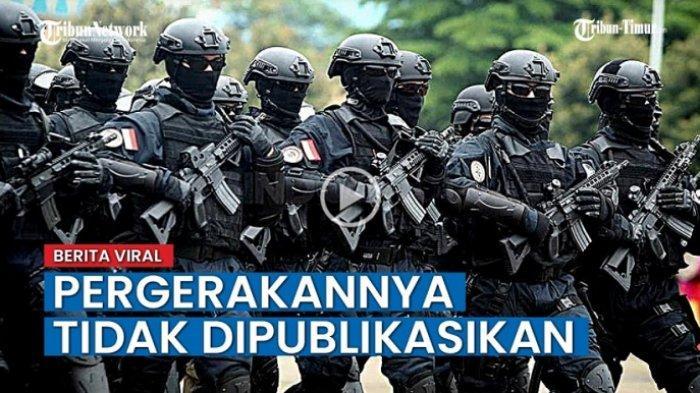 VIDEO: Pasukan Denjaka Disebut  Ada Di Papua ? Kadispen: Pergerakannya Tidak Dipublikasikan