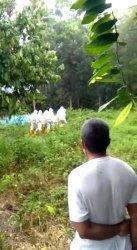 Positif Corona, Tahanan Kasus Penipuan di Polman Meninggal