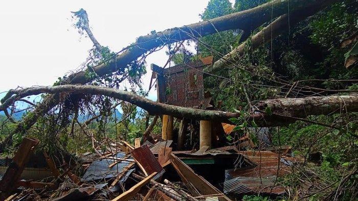 Rumah Adat di Rantelemo Tana Toraja Hancur Tertimpa Pohon