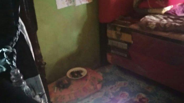 Begini Penampakan Rumah Bocah Korban Pesugihan di Gowa, Ada Sesajen