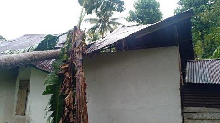 Puting Beliung Mengamuk di Sinjai, 3 Rumah Rusak dan Sejumlah Pohon Tumbang