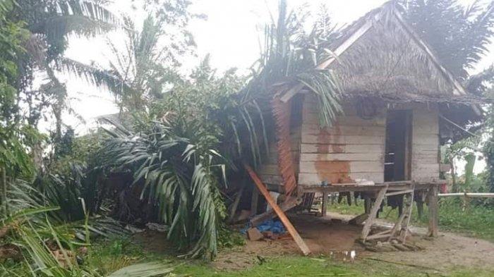 Puting Beliung Terjang Desa Arusu Luwu Utara, 5 Rumah dan 1 Sarang Burung Walet Rusak