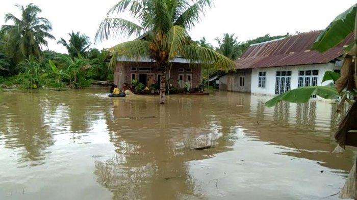 Sudah Kering dan Siap Jual, Rumput Laut Warga Desa Tirowali Luwu Ikut Terendam Banjir