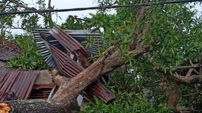 Tujuh Rumah Warga Rusak Akibat Angin Puting Beliung di Desa Tarowang Takalar