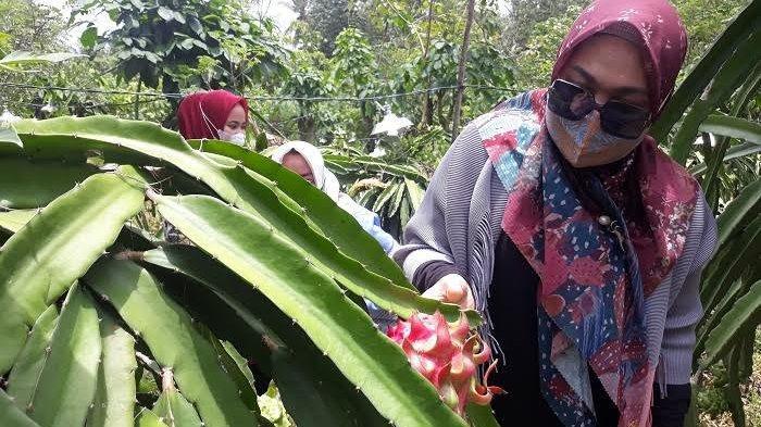 Desa Sukamaju Berpotensi Jadi Spot Wisata Baru di Sinjai