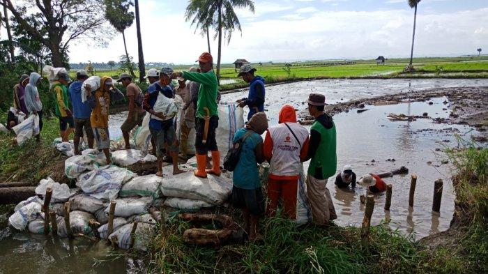 Saluran Irigasi Wettee Kabupaten Sidrap Jebol