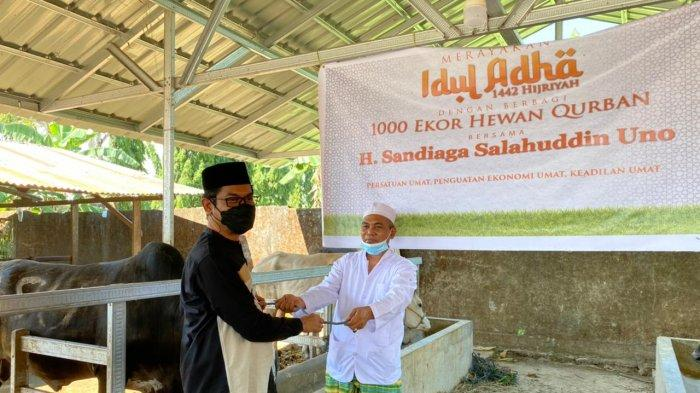 Paket 1000 Ekor Sapi Kurban SSU, Khalwatiyah Syekh Yusuf Al Makassary: Terima Kasih Pak Sandiaga Uno