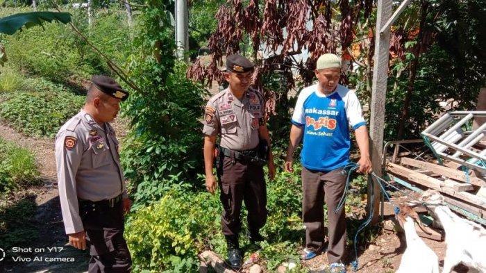 Sat Sabhara Polres Enrekang Sumbang 2 Ekor Kambing untuk Warga Kurang Mampu di Karueng