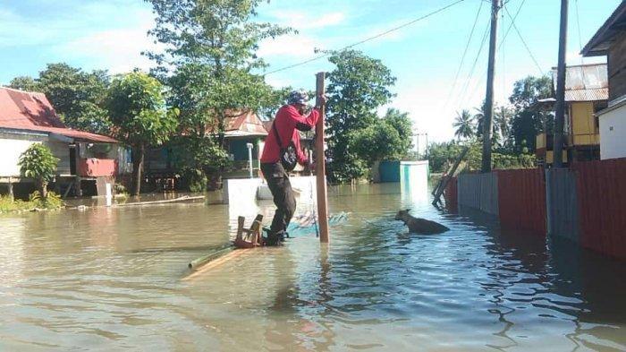 Aksi Heroik Petugas Damkar, Selamatkan Anjing yang Terjebak Banjir Wajo