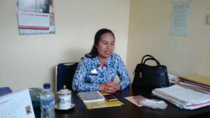 Dinkes Toraja Utara Imbau Warga Waspadai Demam Berdarah, Sudah Ada yang Terjangkit