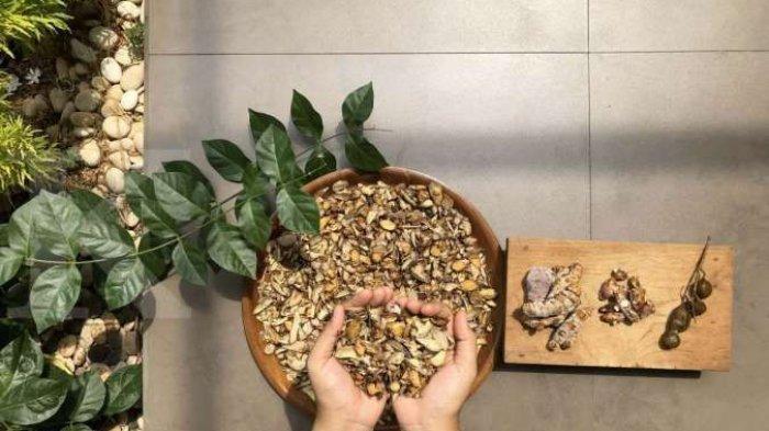 6 Resep Ramuan Jamu Tradisional untuk Meningkatkan Daya Tahan Tubuh, Bisa Buat Sendiri di Rumah
