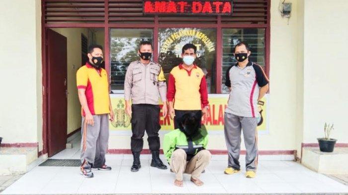 BREAKING NEWS: Cabuli Anak Kandung Hingga Hamil, Pria di Toraja Utara Ditangkap Polisi