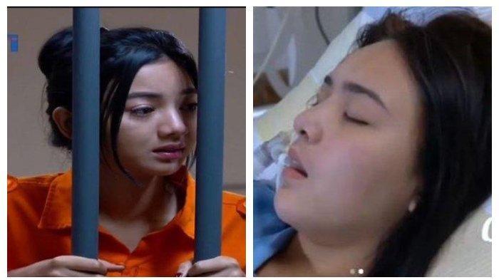 SINOPSIS Ikatan Cinta 5 Juni - Andin Penjarakan Elsa Usai Tahu Reyna adalah Nindy, Al Terancam Cerai